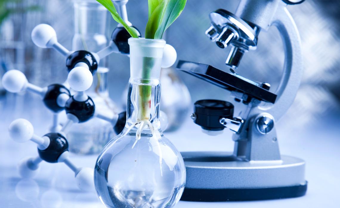 D org examines bioscience issues in biodiversity, environment, genomics, biotechnology, evolution